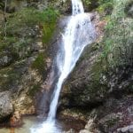 Giornata al Parco Nazionale D'Abruzzo: la riserva naturale della Camosciara