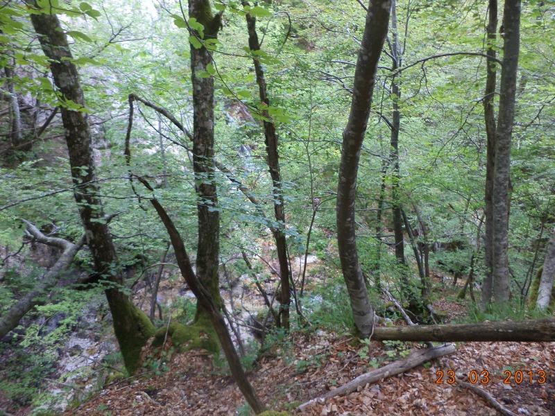 riserva parco nazionale d abruzzo