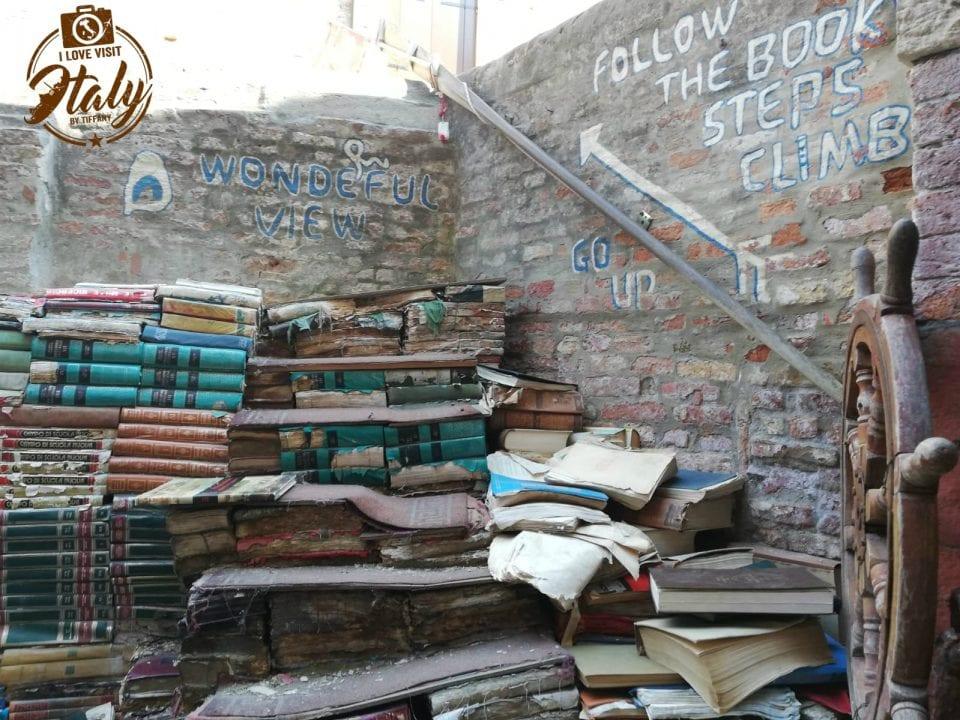 librerie veneziane con gatti