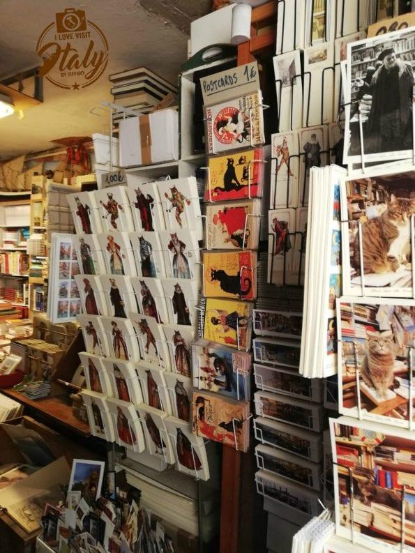 libri gatti venezia